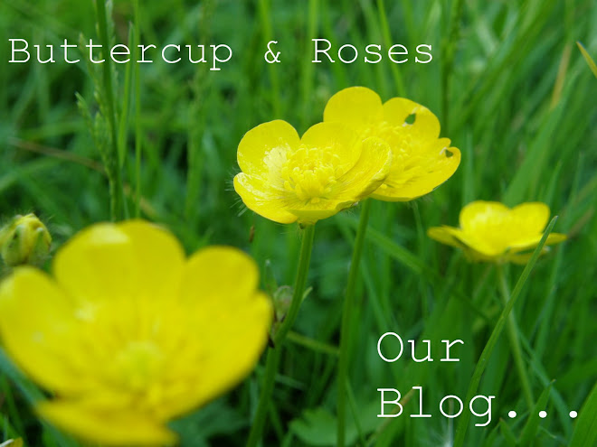 Buttercup & Roses