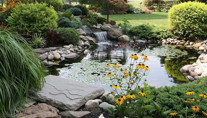 Serenity is Good Health