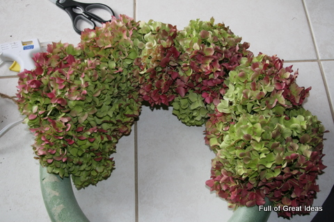 how to keep cut hydragena from going wilty