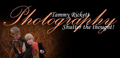 Tammy Rickett Photography