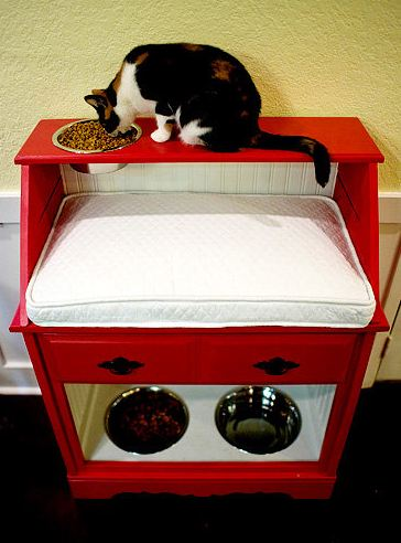Cat Food Stand To Keep Dogs Out