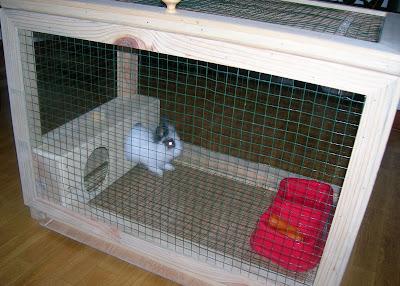 Antig edades y aperos jaula para conejo enano - Casas para conejos enanos ...