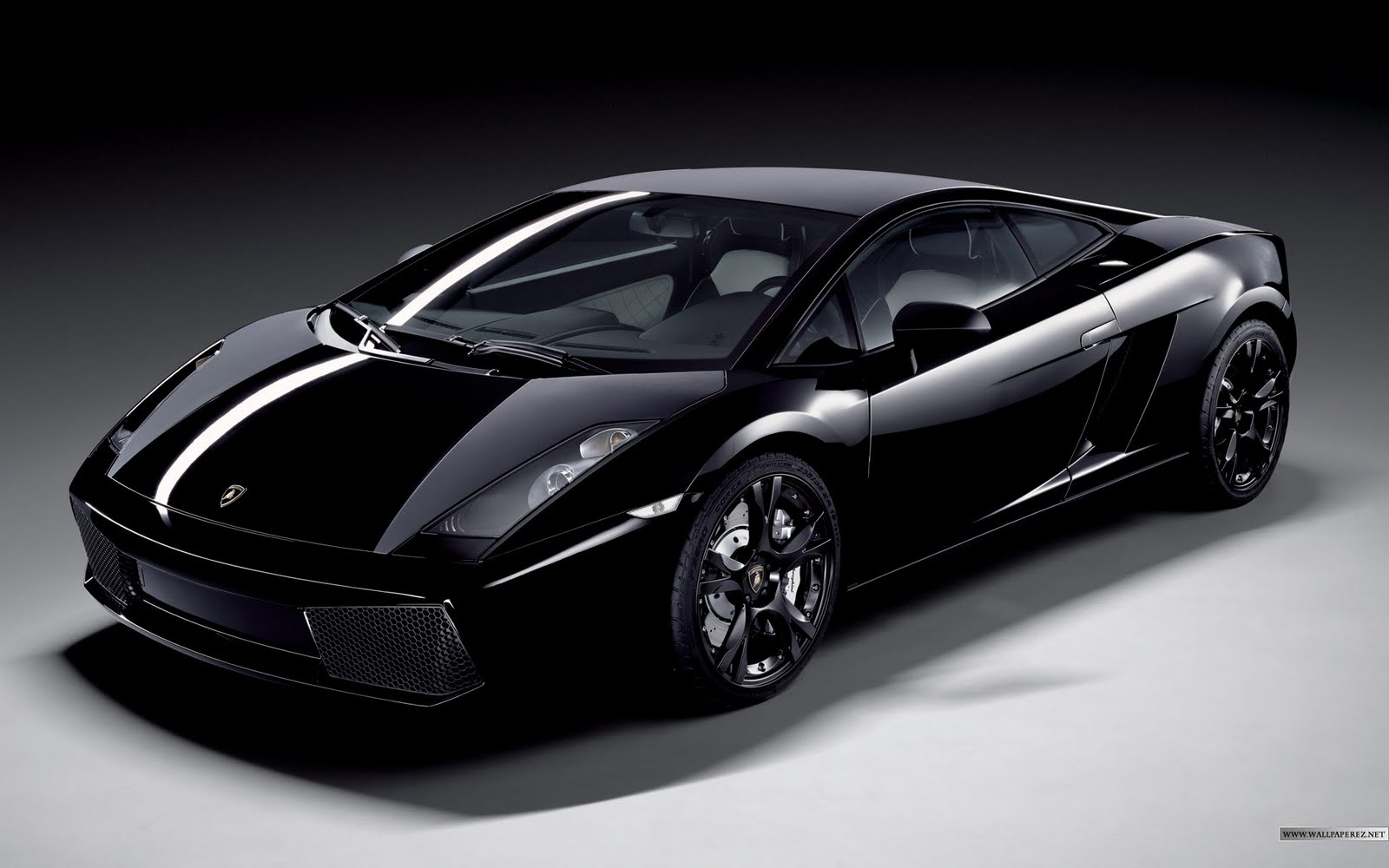 New Lamborghini Gallardo 2011 Car Under 500 Dollars