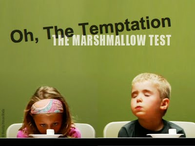 The Stanford Marshmallow Experiment and Delayed Gratification