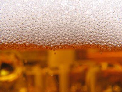 בירה ועוד