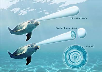 """Cymaglyphen: Kymatik zeigt Delfinsprache - Blaubeerwald Institut Der Schall des Delfingesangs als """"Cymaglyphe"""""""