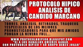 PROTOCOLO HIPICO ANALIZADOR