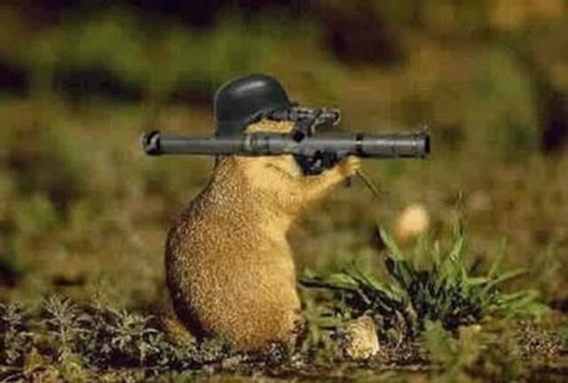 smushie ranch  gunther taken out by killer gopher