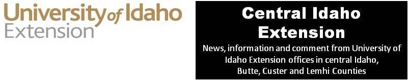 Central Idaho Extension