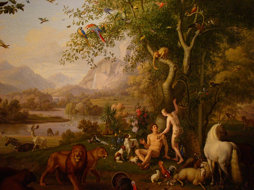 a look at the creation of heaven and earth in the bible Why do you think many christians don't look forward to heaven any  in heaven christ promises on the new earth,  sin someday in heaven the bible says.