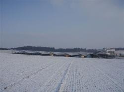 5994 Module auf 8000 qm: Neue Freiflächenanlage bei Wolfersdorf im Landkreis Freising
