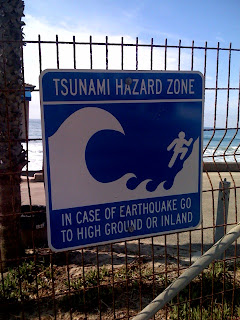 Tsunami Hazard Zone - San Clemente, CA