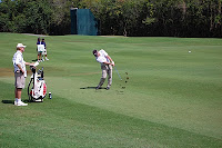 2010 Puerto Rico Open
