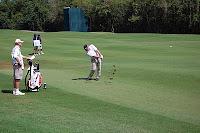 2010 Puerto Rico Open