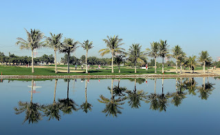 Abu_Dhabi_Golf_Course_6_hole