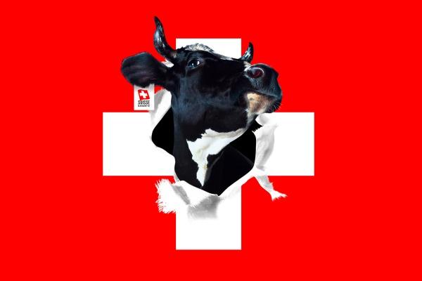 fond-ecran-drapeau-suisse.jpg