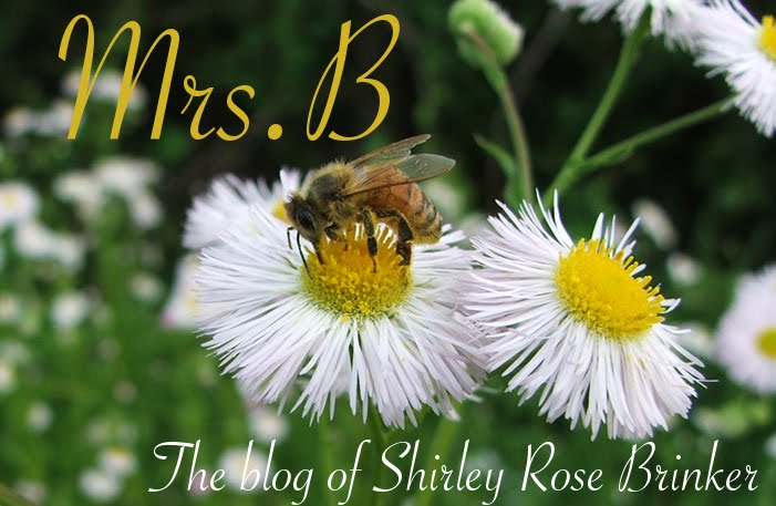 Shirley Brinker's Blog