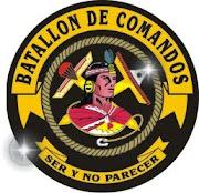 BATALLON DE COMANDOS 19