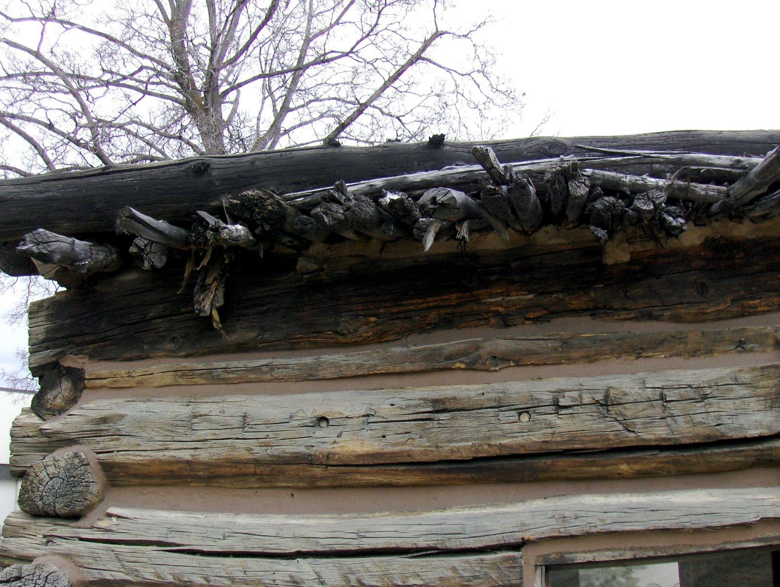 [cabin+roof.JPG]