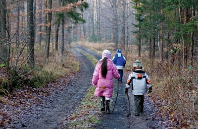 NAMC montessori cosmic education stewardship environmental living programs walking a trail