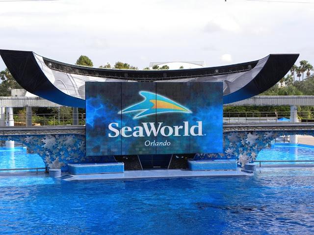 Shamu Seaworld Orlando