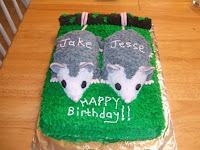 Birthday Cake for Twins Opossum