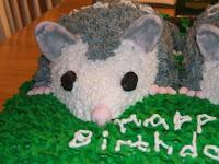 Twin Baby Opossum Cake