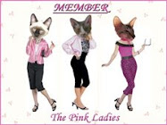 Lola is a member of The Pink Ladies!