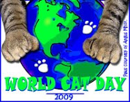 World Cat Day!!