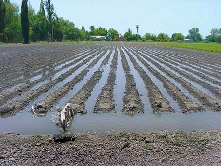Agricultura metodos de riego for Proyecto de riego por aspersion