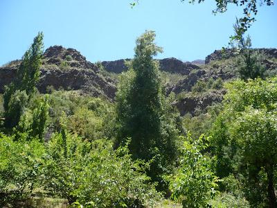 Chile Cajon del Maipo