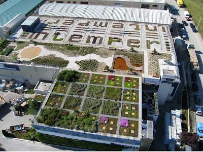 Intemper abre sus puertas a la universidad europea de - Jardineria colmenar viejo ...