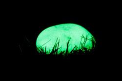 Piedra ver oscuridad
