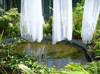 Jardines en Medellin