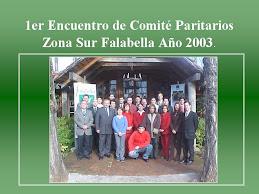 Organización 1er Encuentro de Comités Zona Sur