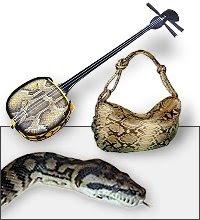 がっきじてん 楽器の種類