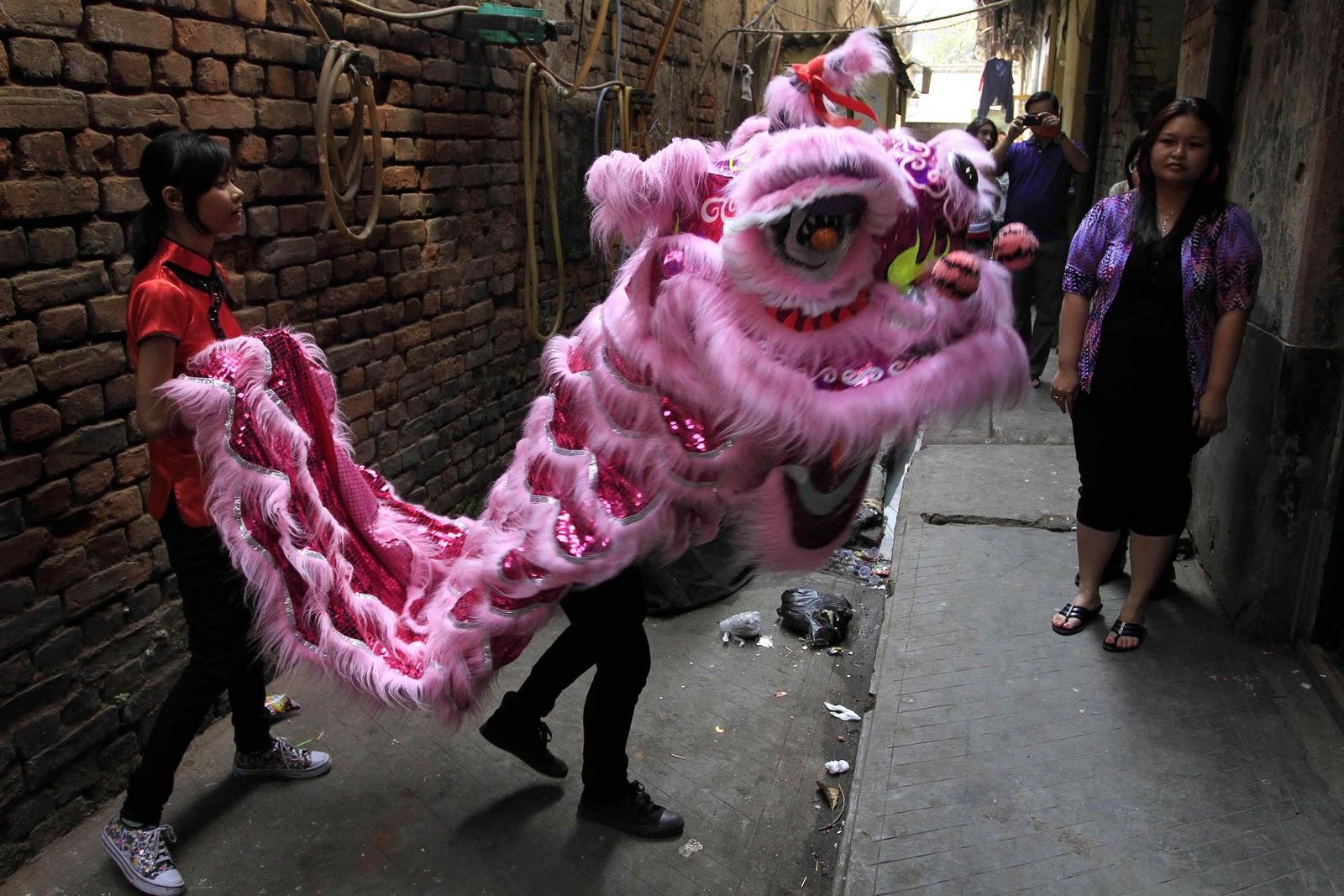 http://4.bp.blogspot.com/_WjviWf8OeLI/TUrfocAzmhI/AAAAAAAAAHs/rL8MmVkcokE/s1600/India%2527s+pink+dragon.jpg