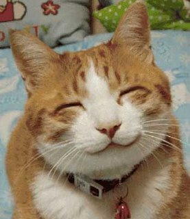http://4.bp.blogspot.com/_WkolsN4K4ZE/TUctZ07uwmI/AAAAAAAAAGY/c7y60QeckT0/s1600/kucing-smile4.jpg