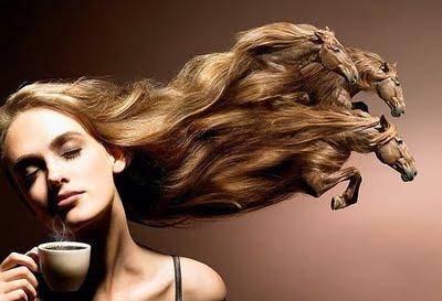 los cabellos