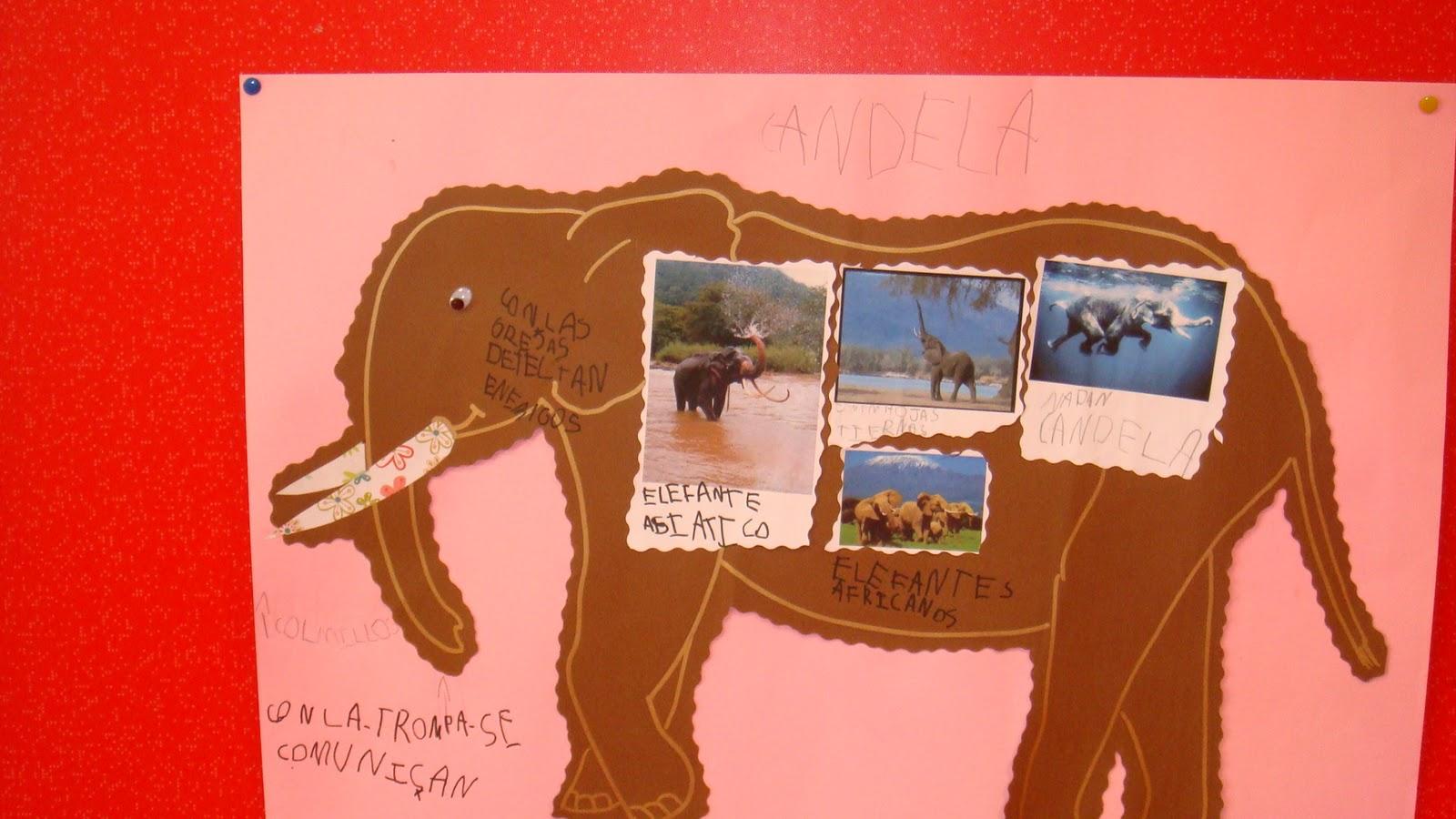 Proyecto de los elefantes el elefante este gran for Caracteristicas de un mural