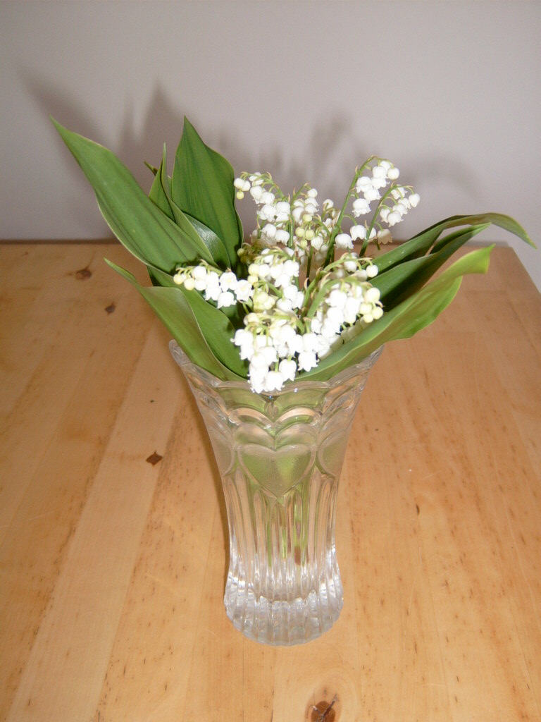 Relocation to france made easy lily of the valley a french lily of the valley is traditionally sold on 1st may in france if you live in france you will see roadside stands or people in front of supermarkets izmirmasajfo