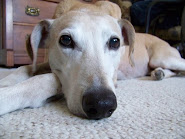 Henry~9 years old (approx.)
