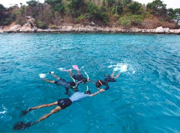 ดําน้ำเกาะล้าน - Dive, scuba, diving, snorkeling at Koh Larn (Coral Island) Pattaya Thailand