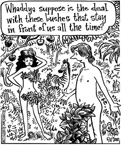 This Adam and Eve cartoon from