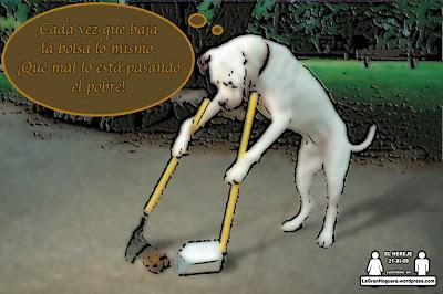 El mejor amigo del hombre es el perro