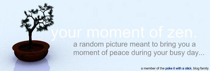 your moment of zen