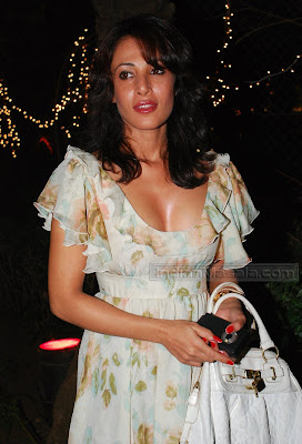 Preeti Bhutani Looks Hot at a Private Party