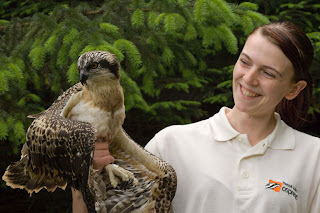 Caroline Blackie with one of the Tweed Valley osprey chicks