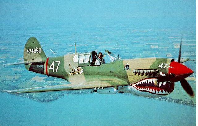 Aerei Da Caccia Americani Seconda Guerra Mondiale : Centurio curtiss p warhawk