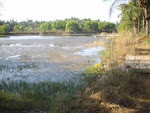"A former ""Prawn cultivation Farm"" in Mabukala.A  brilliant but unprofitable ""Entrepreneur venture""."